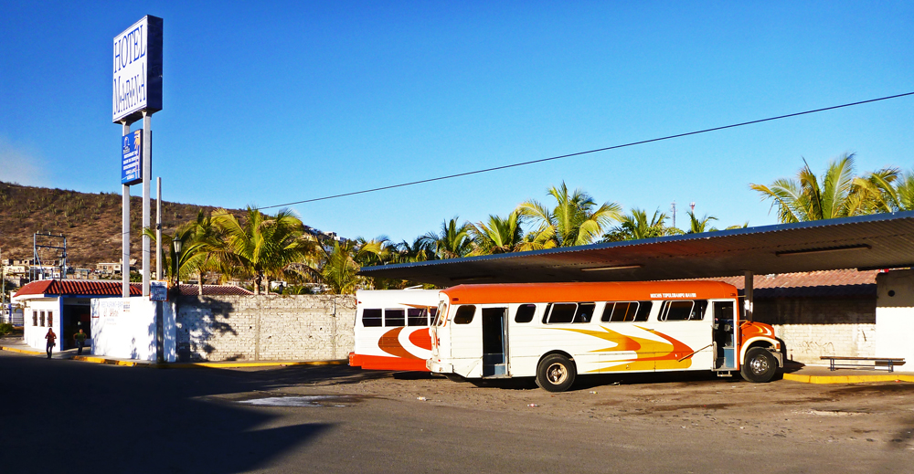 The buses in Topolobampo