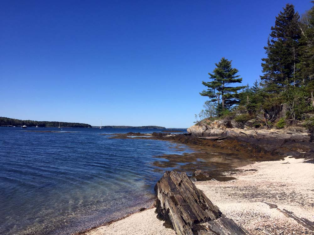 This Is Why (at The Gosling Islands, Maine)