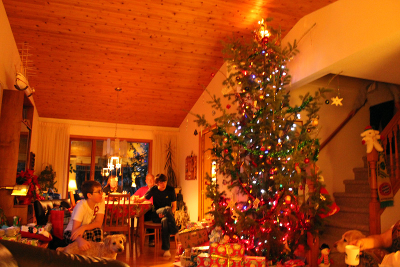 Christmas Tree - After